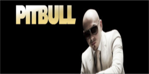 Pitbull.jpeg